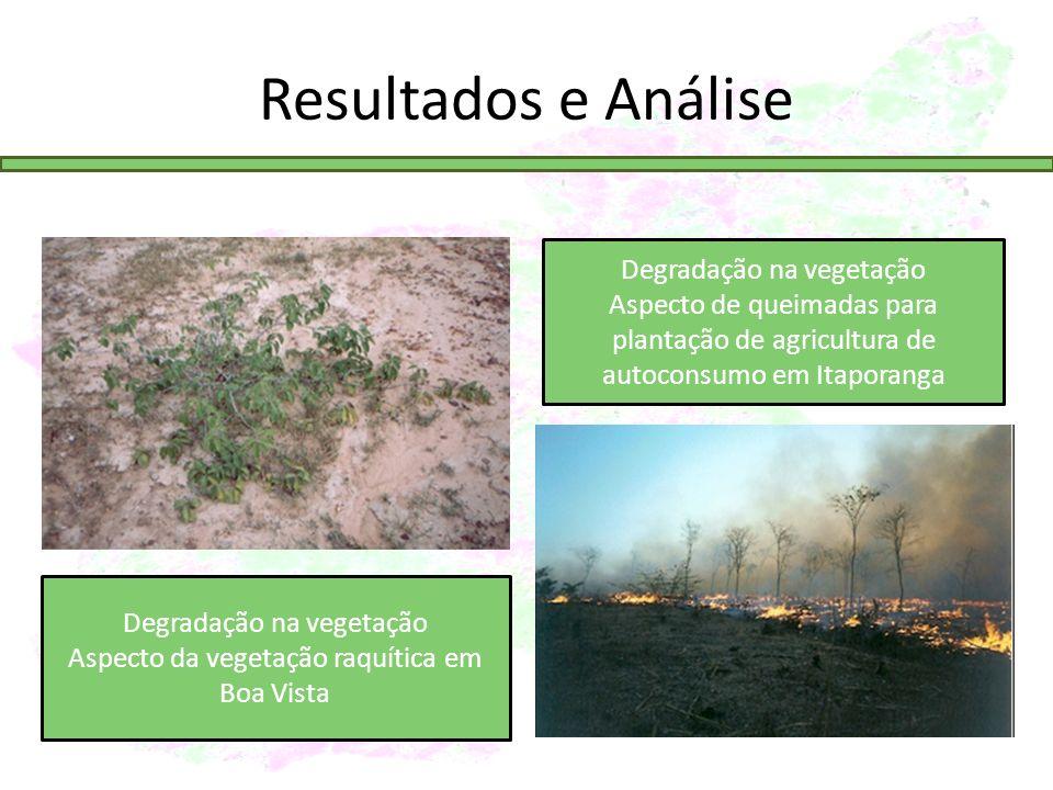 Resultados e Análise Degradação na vegetação