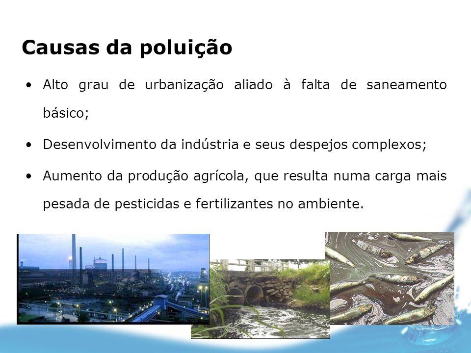 Causas da poluição Alto grau de urbanização aliado à falta de saneamento básico; Desenvolvimento da indústria e seus despejos complexos;
