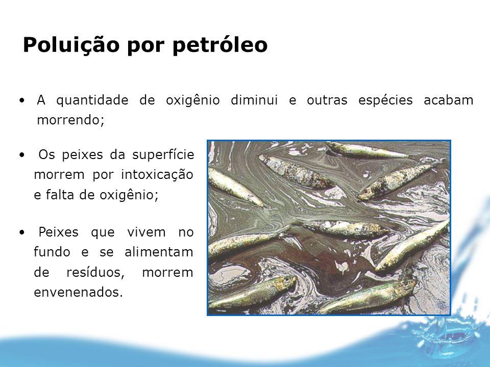 Poluição por petróleo A quantidade de oxigênio diminui e outras espécies acabam morrendo;