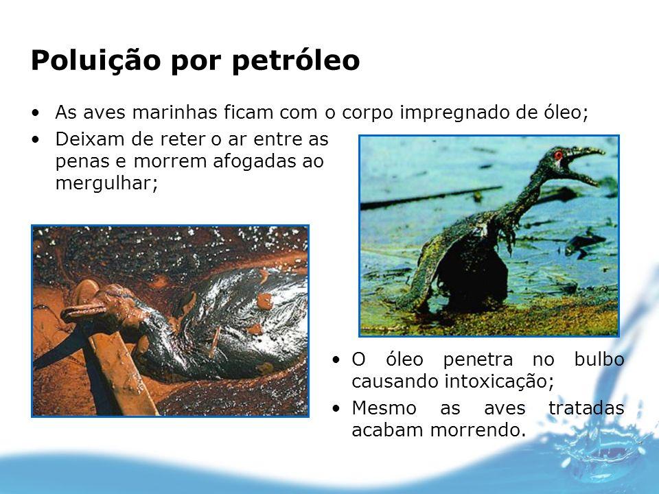 Poluição por petróleo As aves marinhas ficam com o corpo impregnado de óleo; Deixam de reter o ar entre as penas e morrem afogadas ao mergulhar;