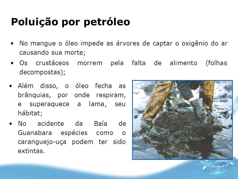 Poluição por petróleoNo mangue o óleo impede as árvores de captar o oxigênio do ar causando sua morte;