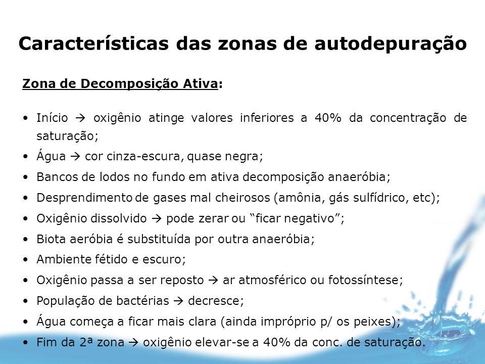 Características das zonas de autodepuração