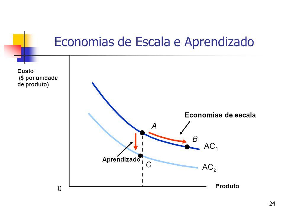 Economias de Escala e Aprendizado