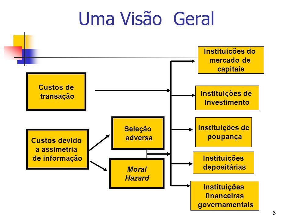 Uma Visão Geral Instituições do mercado de capitais Custos de