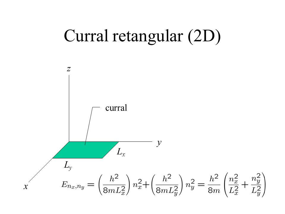 Curral retangular (2D) x y z Ly Lx curral