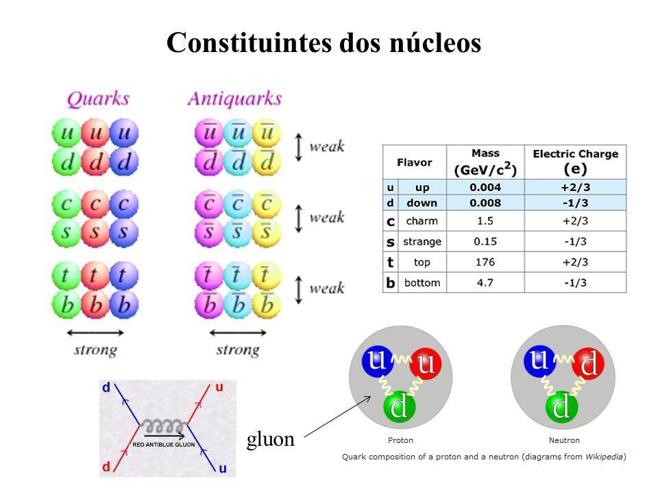 Constituintes dos núcleos