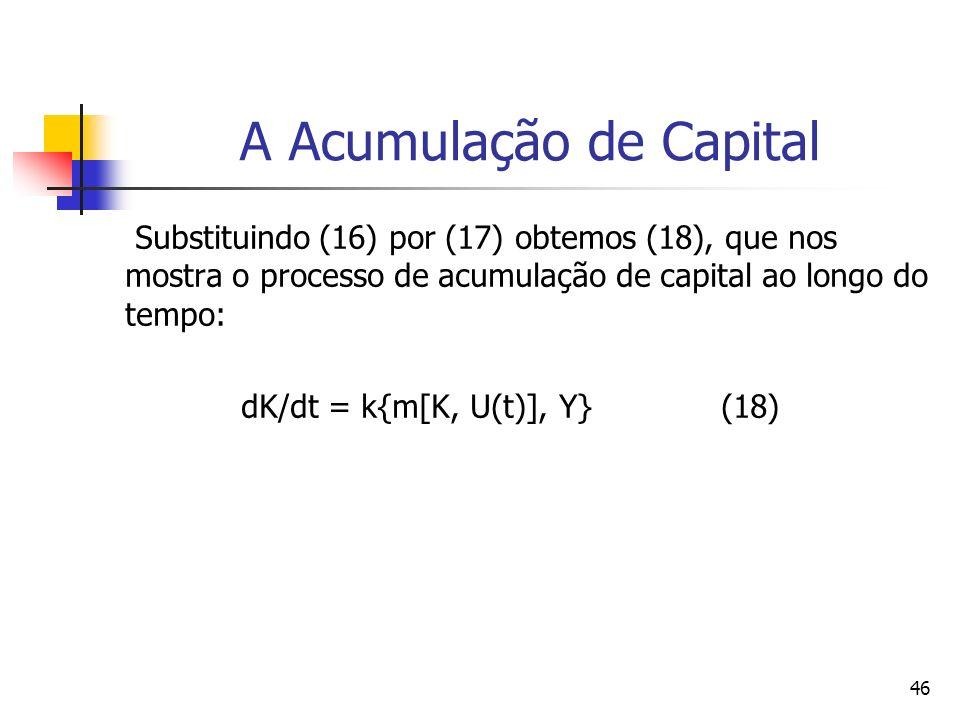 A Acumulação de Capital
