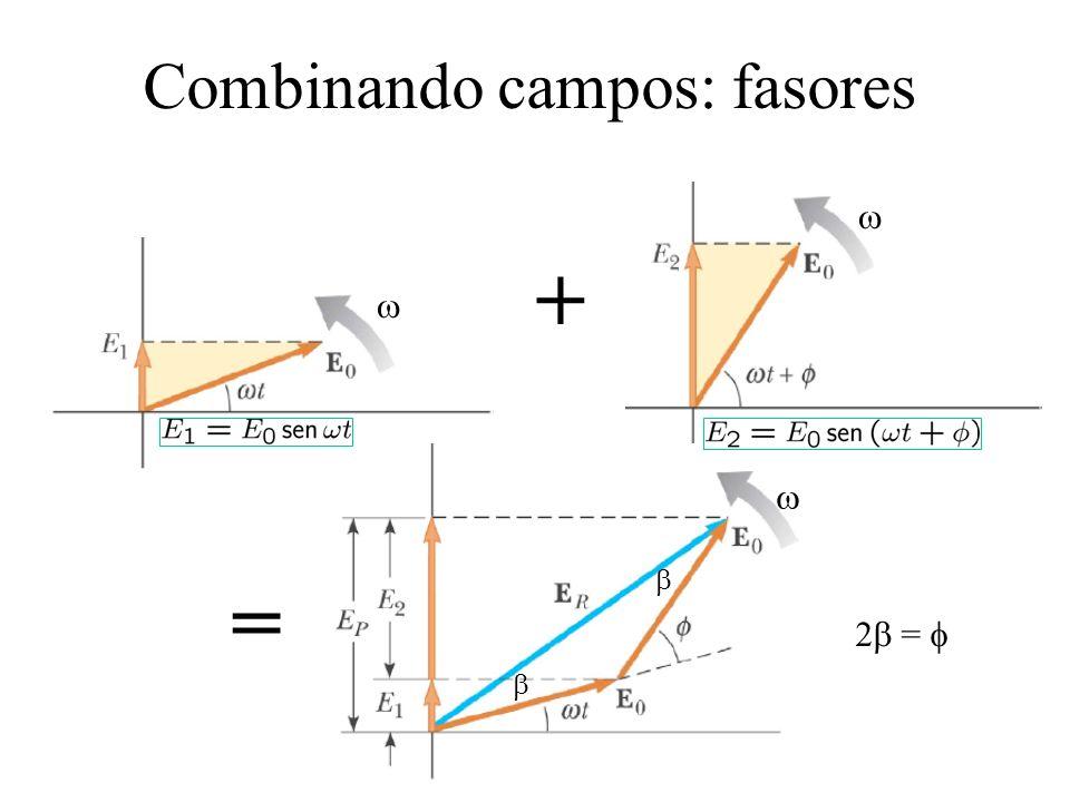 Combinando campos: fasores