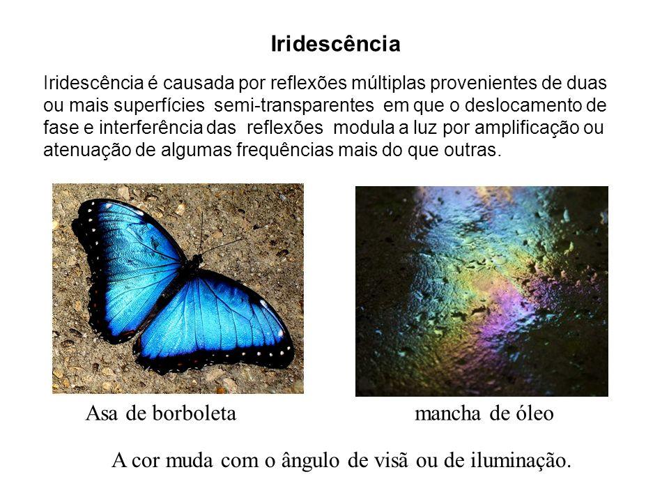 Asa de borboleta mancha de óleo