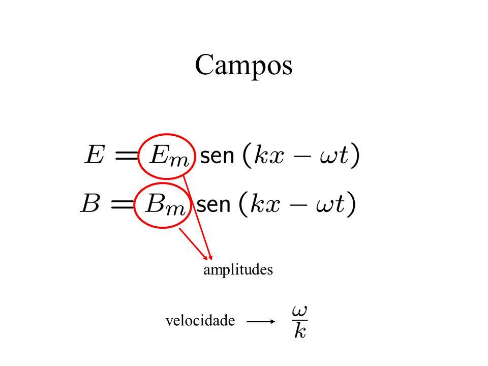 Campos amplitudes velocidade