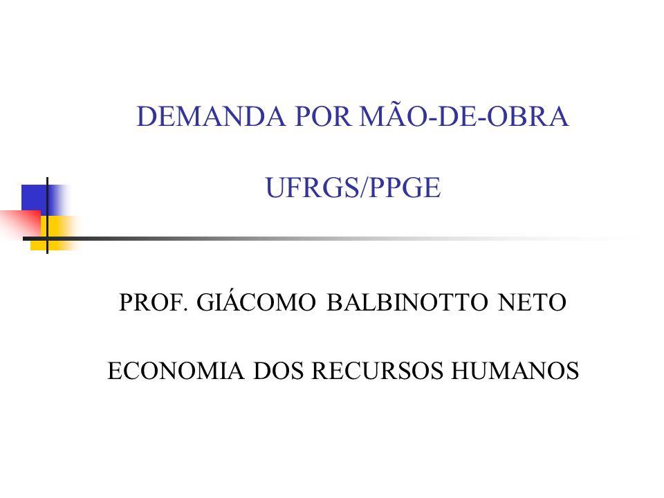 DEMANDA POR MÃO-DE-OBRA UFRGS/PPGE