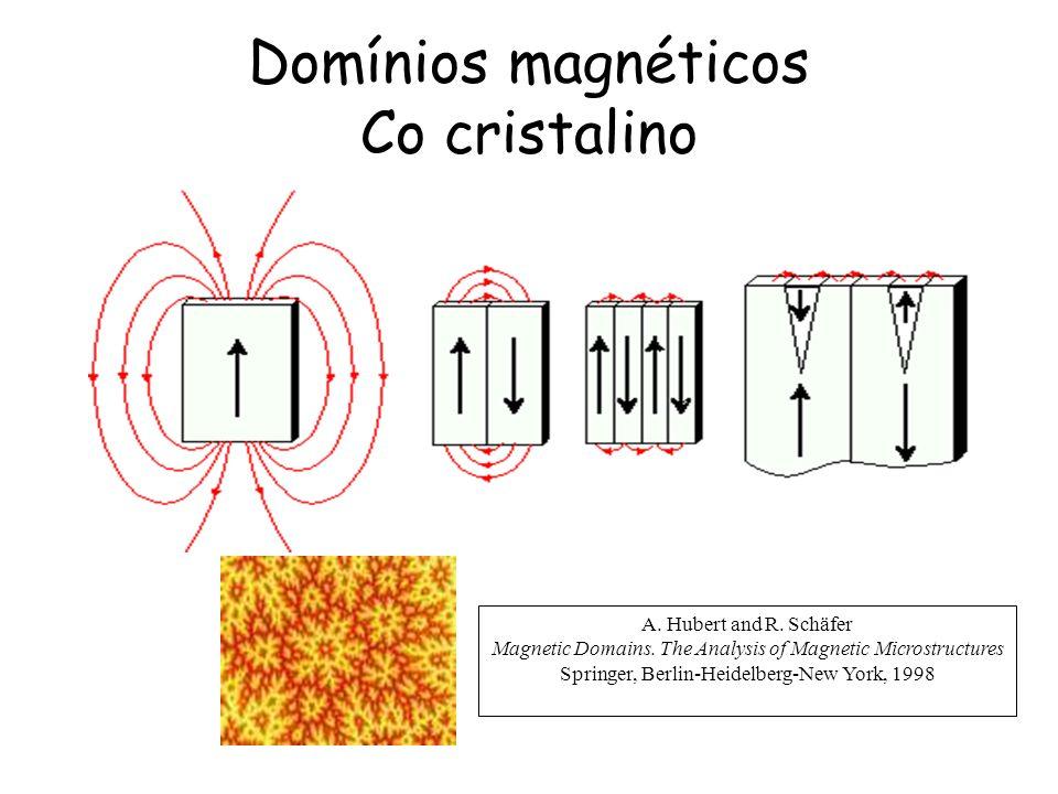 Domínios magnéticos Co cristalino