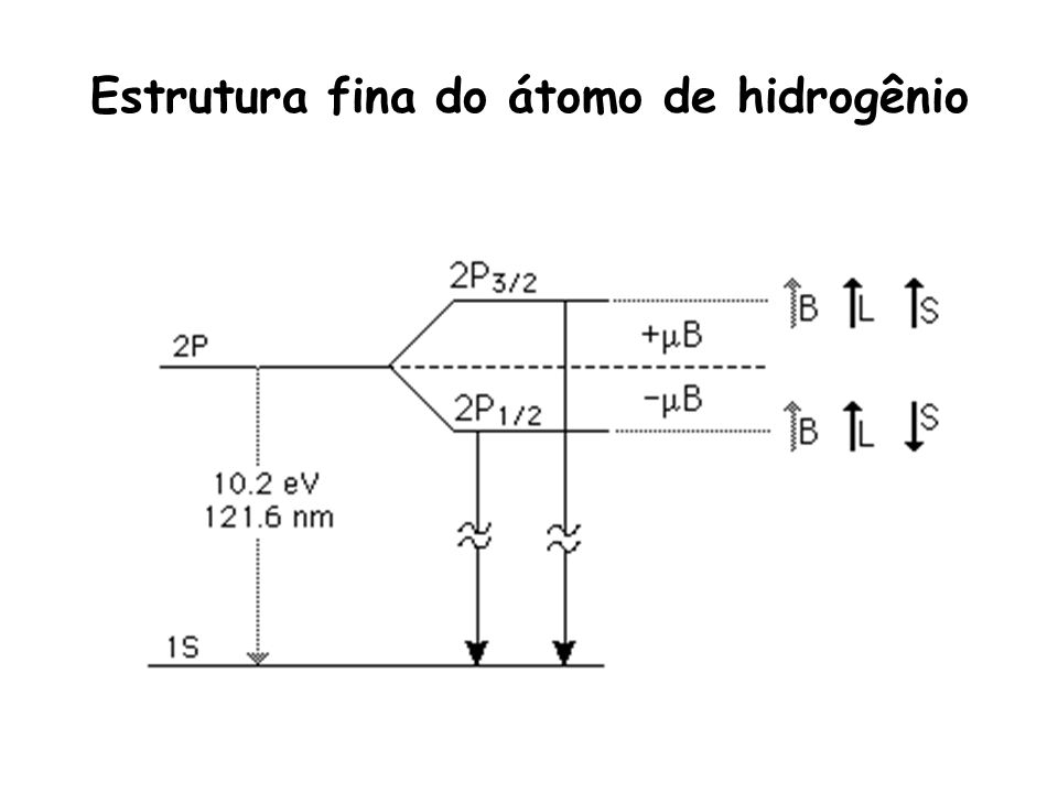 Estrutura fina do átomo de hidrogênio