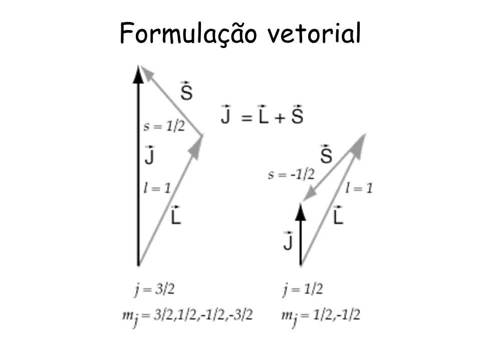 Formulação vetorial