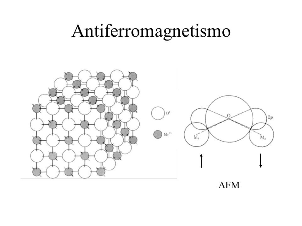 Antiferromagnetismo AFM