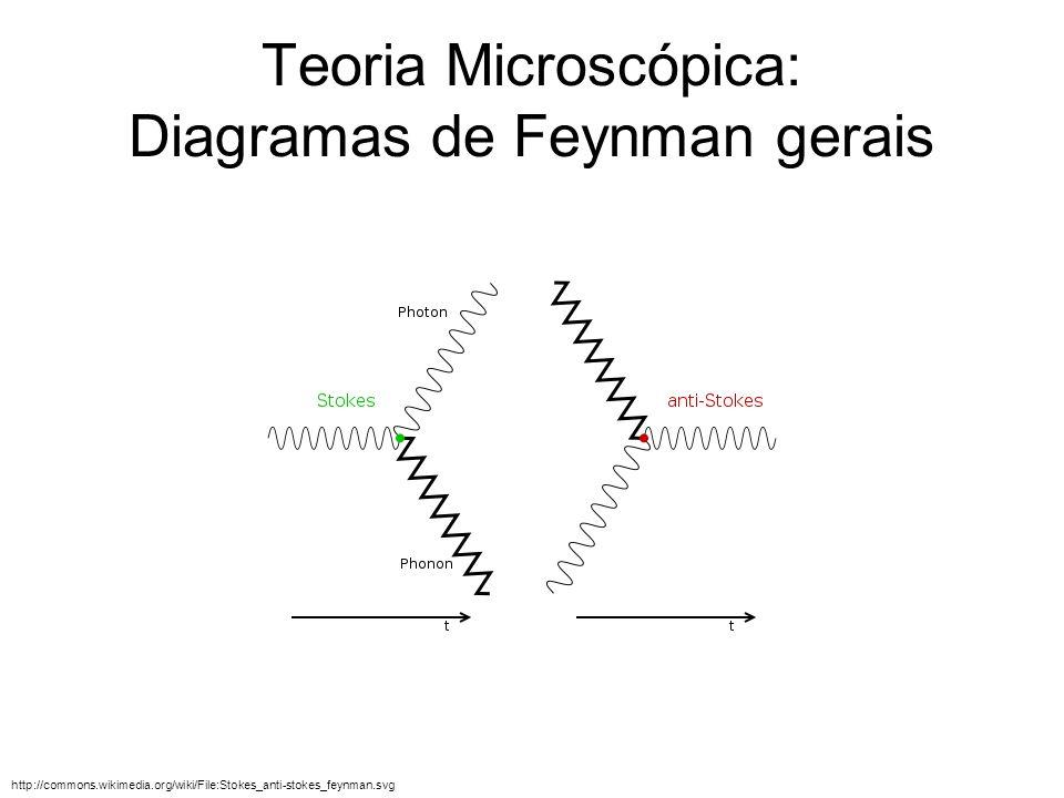 Teoria Microscópica: Diagramas de Feynman gerais