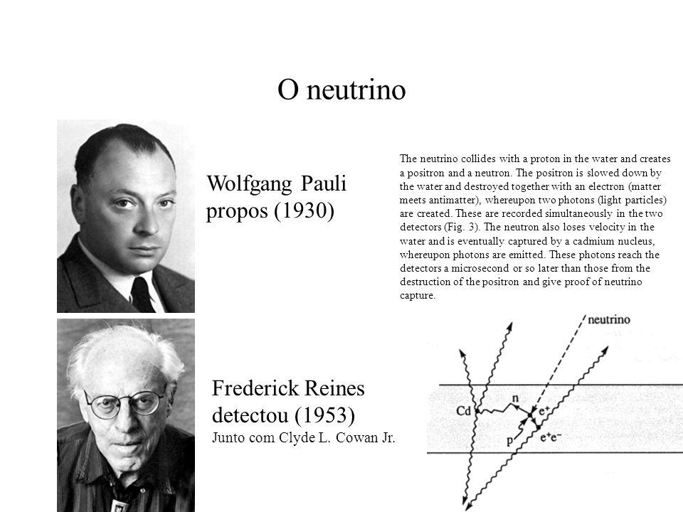 O neutrino Wolfgang Pauli propos (1930) Frederick Reines