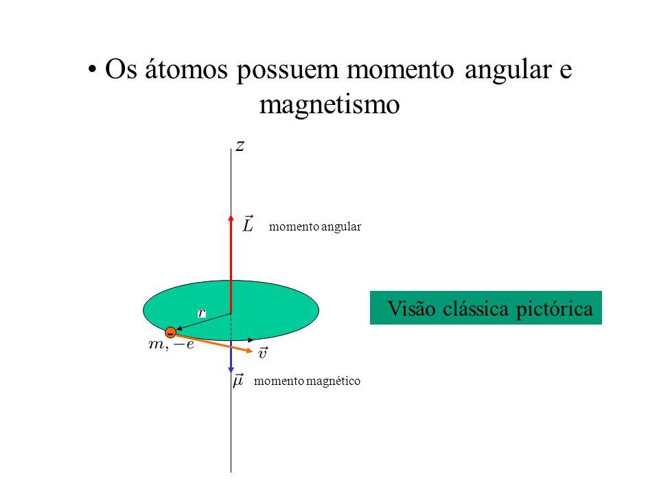 Os átomos possuem momento angular e magnetismo