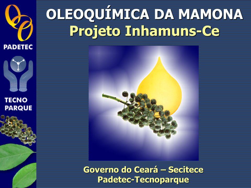 OLEOQUÍMICA DA MAMONA Projeto Inhamuns-Ce Governo do Ceará – Secitece