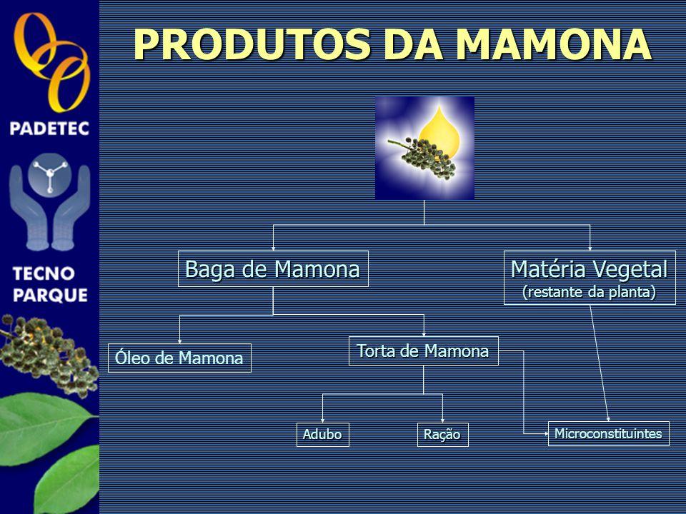 PRODUTOS DA MAMONA Baga de Mamona Matéria Vegetal Torta de Mamona