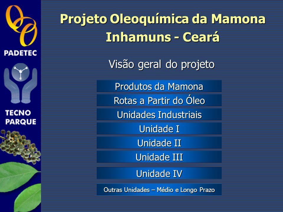 Projeto Oleoquímica da Mamona Inhamuns - Ceará