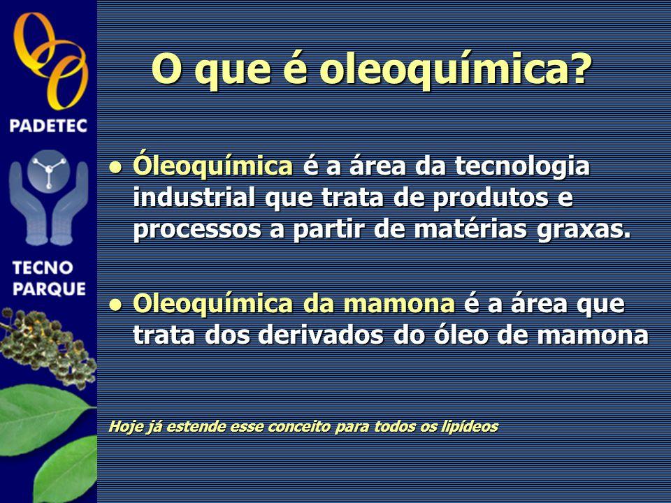 O que é oleoquímica Óleoquímica é a área da tecnologia industrial que trata de produtos e processos a partir de matérias graxas.