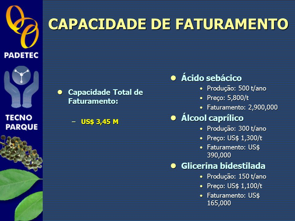 CAPACIDADE DE FATURAMENTO