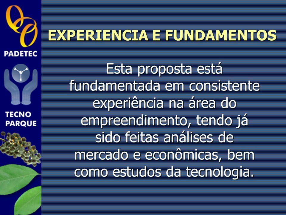 EXPERIENCIA E FUNDAMENTOS