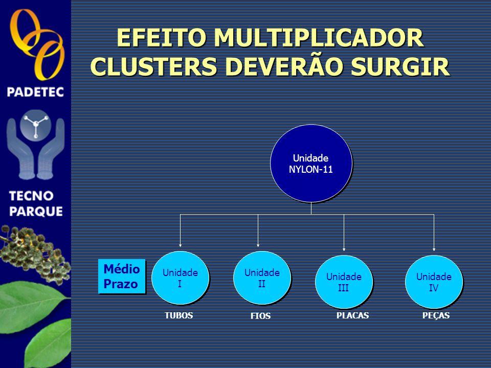 EFEITO MULTIPLICADOR CLUSTERS DEVERÃO SURGIR