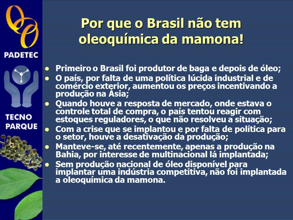 Por que o Brasil não tem oleoquímica da mamona!