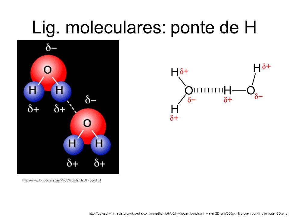 Lig. moleculares: ponte de H