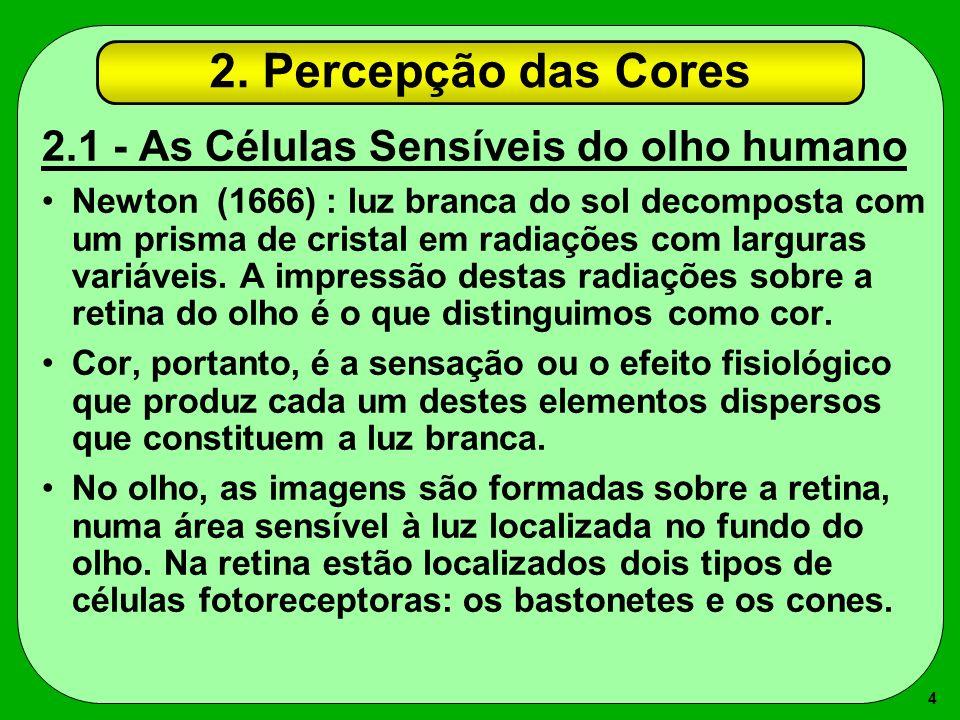 2. Percepção das Cores 2.1 - As Células Sensíveis do olho humano