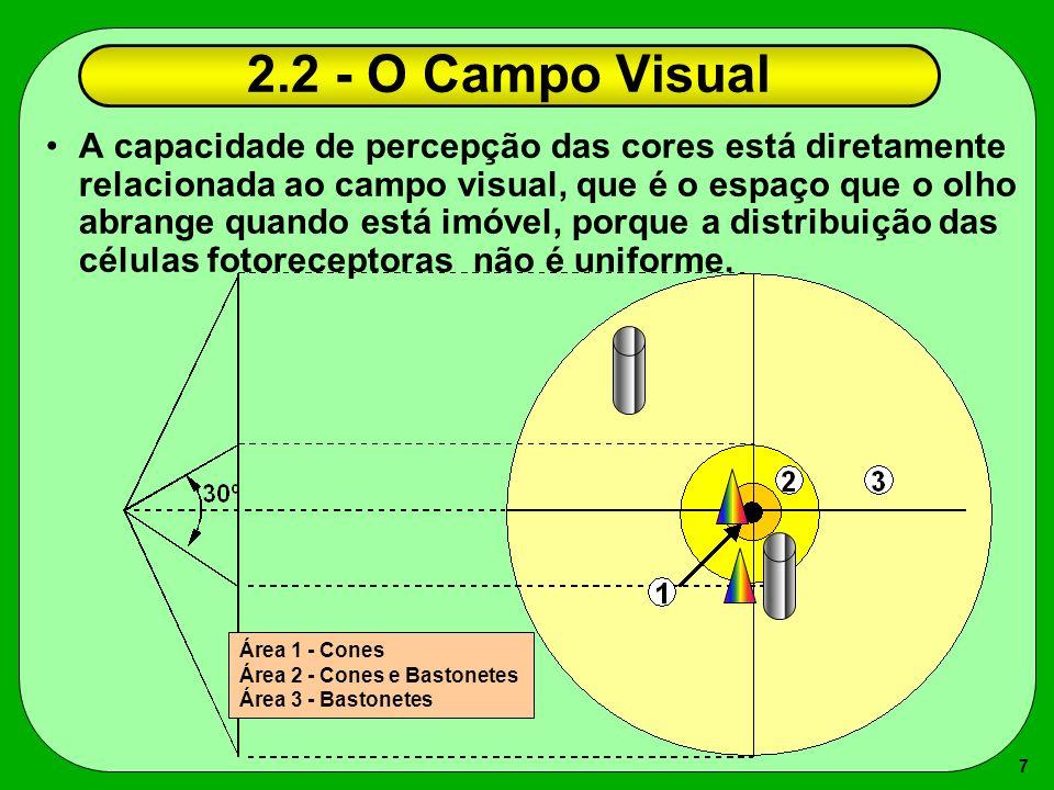 2.2 - O Campo Visual