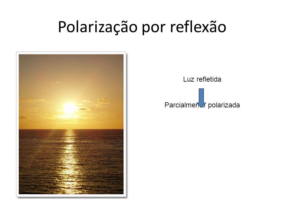 Polarização por reflexão