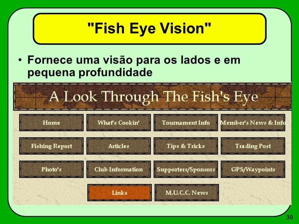 Fish Eye Vision Fornece uma visão para os lados e em pequena profundidade