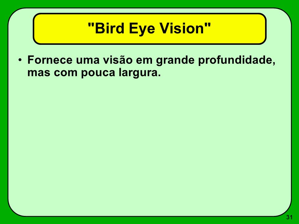 Bird Eye Vision Fornece uma visão em grande profundidade, mas com pouca largura.