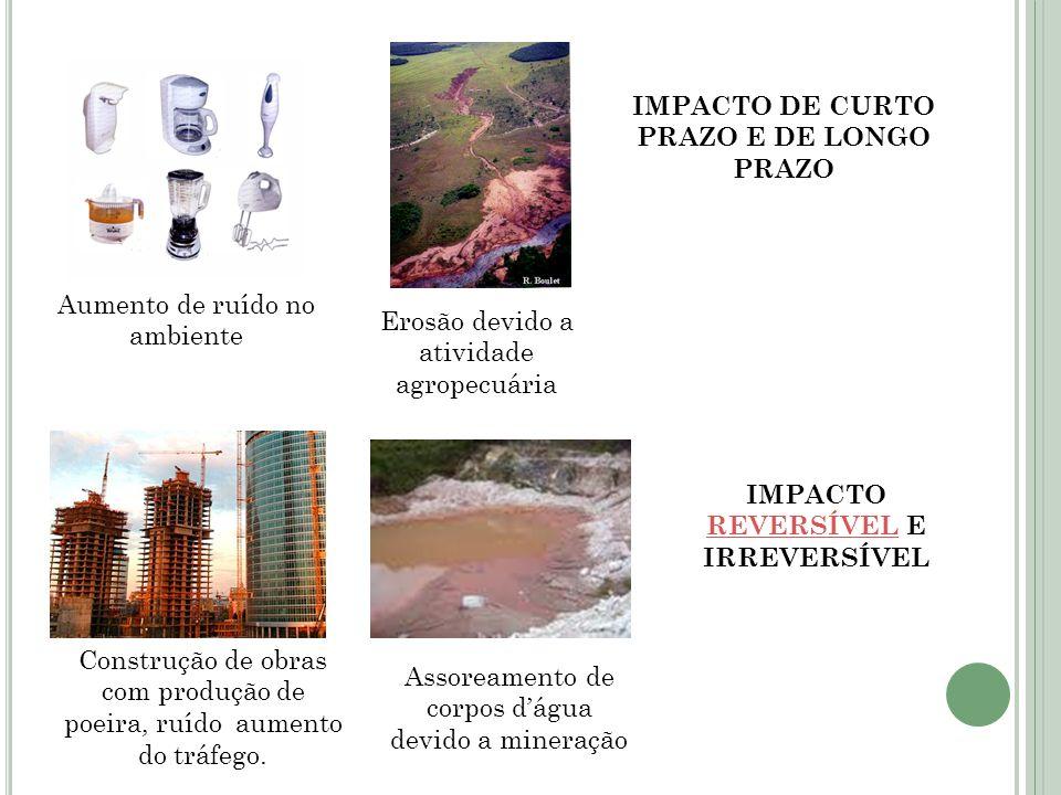IMPACTO DE CURTO PRAZO E DE LONGO PRAZO