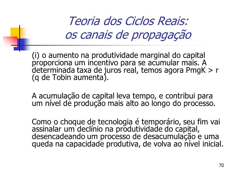 Teoria dos Ciclos Reais: os canais de propagação