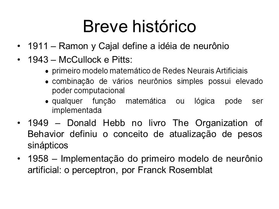 Breve histórico 1911 – Ramon y Cajal define a idéia de neurônio