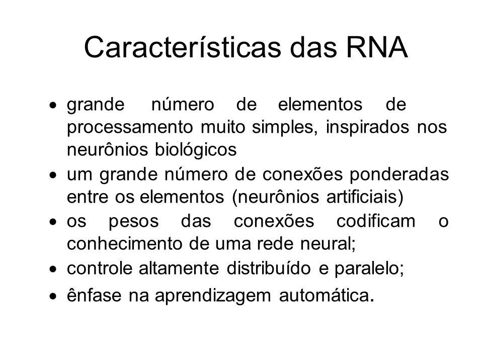 Características das RNA
