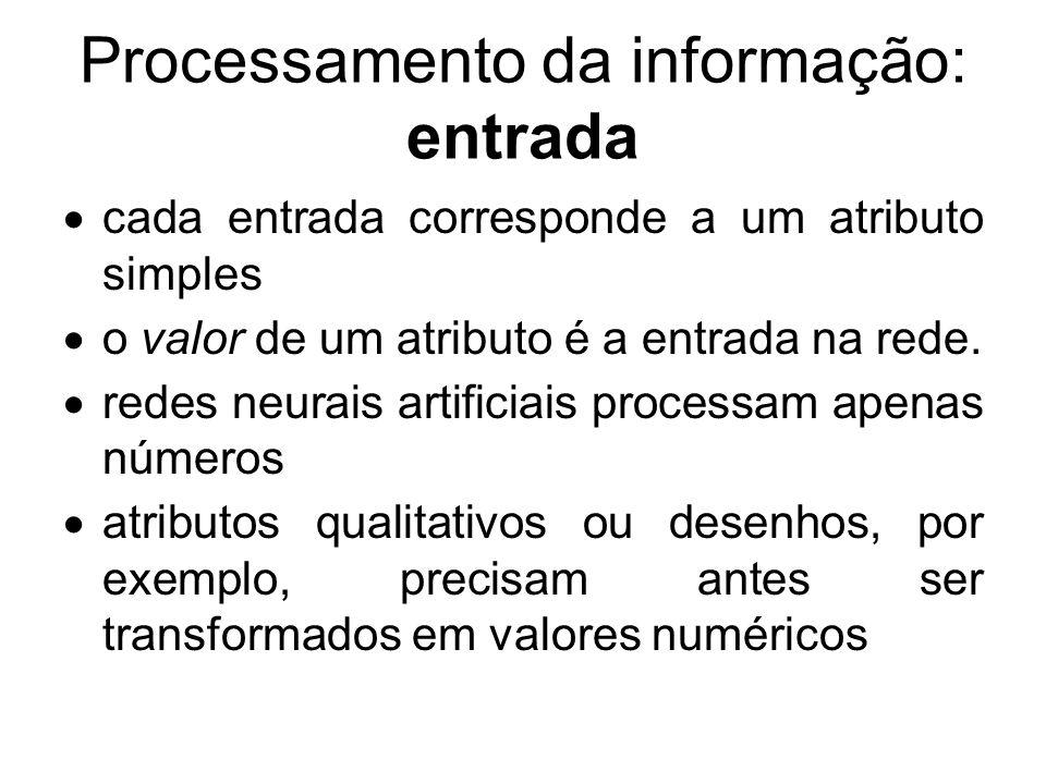 Processamento da informação: entrada