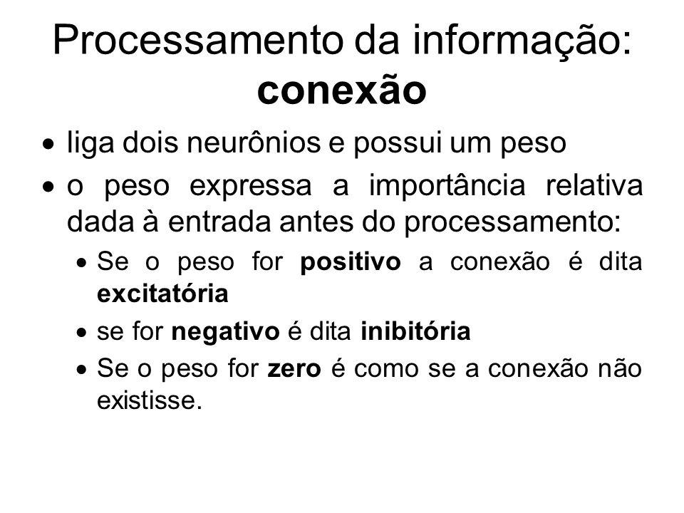 Processamento da informação: conexão