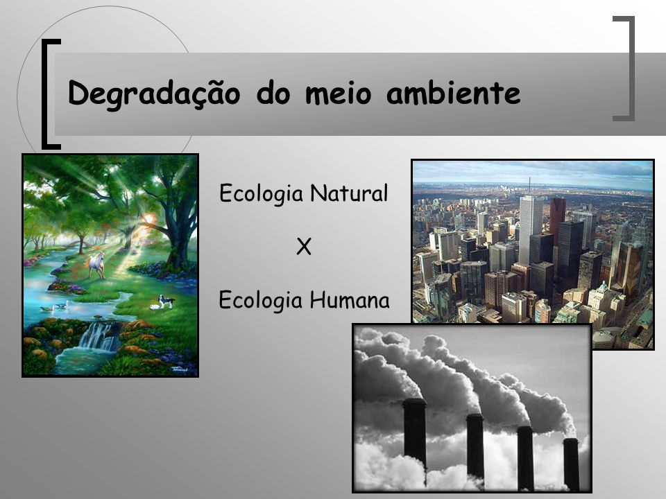 Degradação do meio ambiente