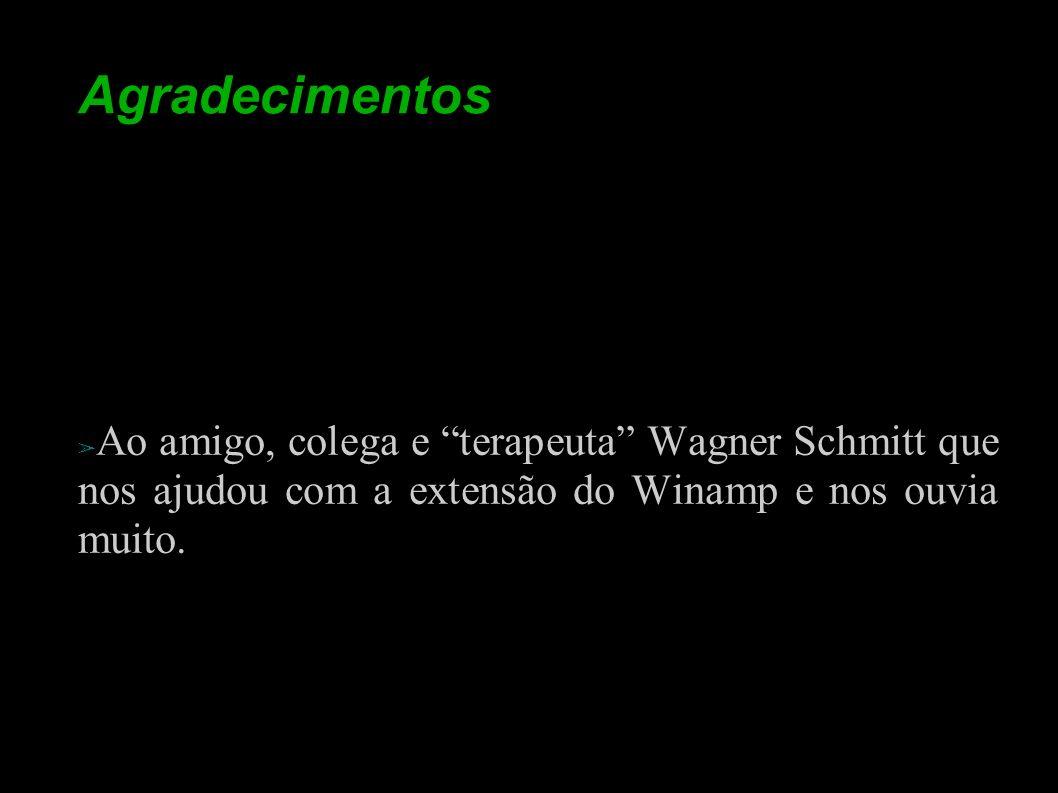 Agradecimentos Ao amigo, colega e terapeuta Wagner Schmitt que nos ajudou com a extensão do Winamp e nos ouvia muito.
