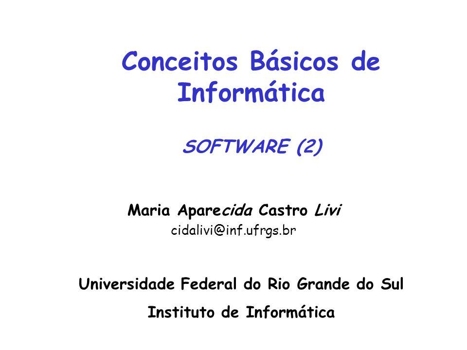 Maria Aparecida Castro Livi cidalivi@inf.ufrgs.br