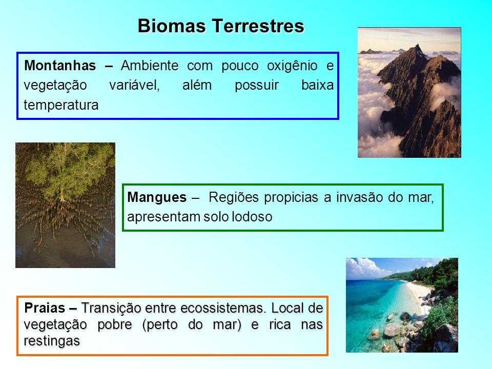 Biomas TerrestresMontanhas – Ambiente com pouco oxigênio e vegetação variável, além possuir baixa temperatura.