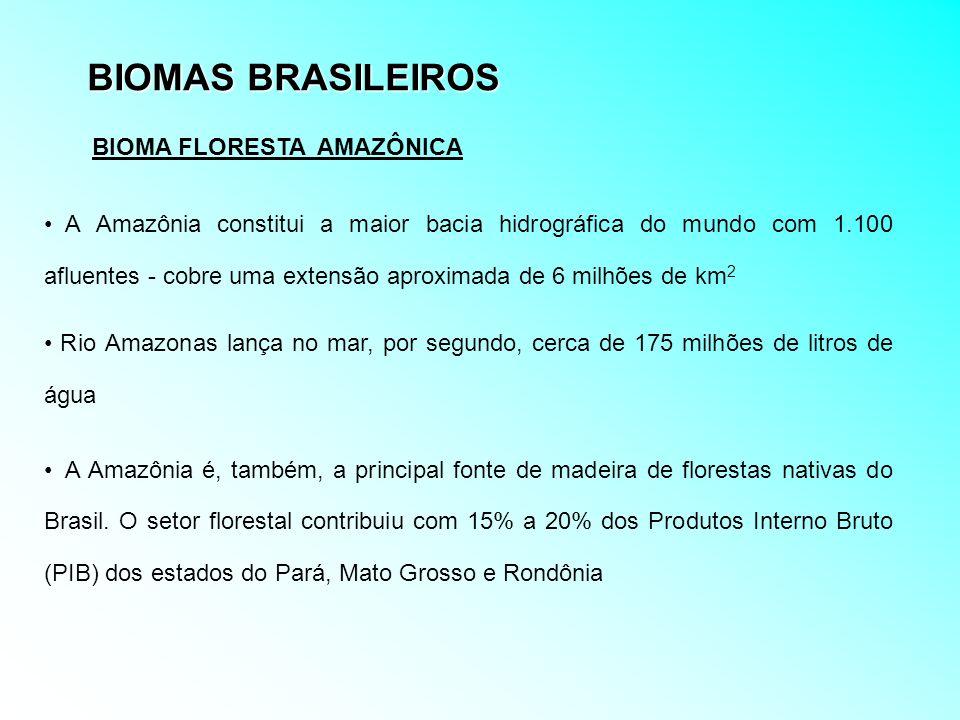 BIOMAS BRASILEIROS BIOMA FLORESTA AMAZÔNICA