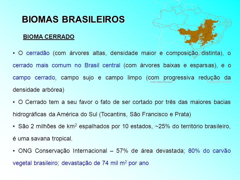 BIOMAS BRASILEIROS BIOMA CERRADO