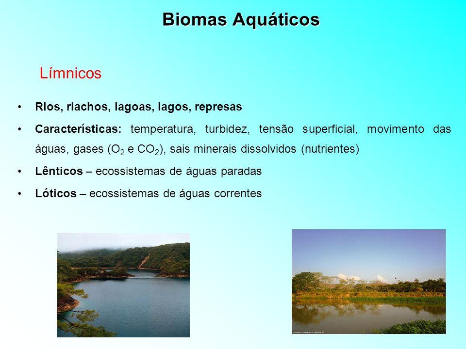 Biomas Aquáticos Límnicos Rios, riachos, lagoas, lagos, represas