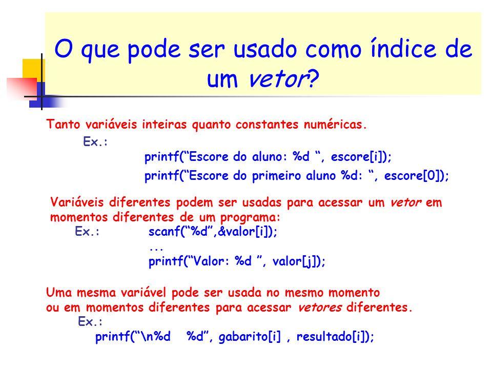 O que pode ser usado como índice de um vetor